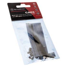 Silverstone SST-CA03 M.2 SSD Screw Kit / Tool kit